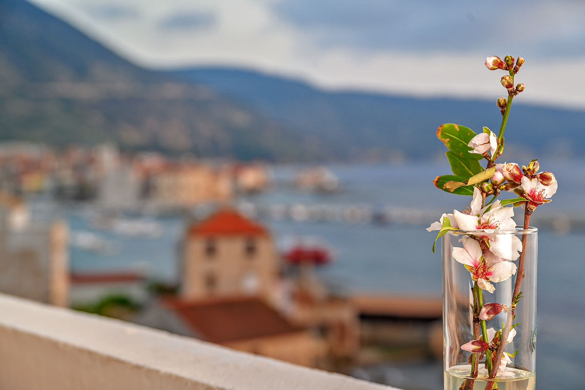 Detail of flowers in a vase and Komiža waterfront in the background